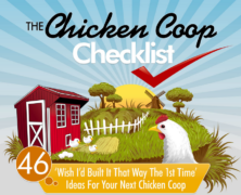 Chicken Coop Infographic Made of Win