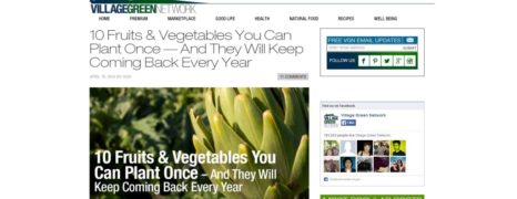 Food Every Year: Perennial Fruits and Vegetables
