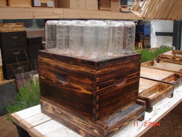 DIY Bee Hive