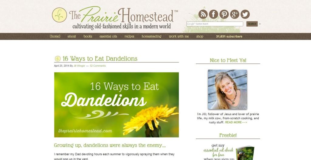 Ways to Eat Dandelions