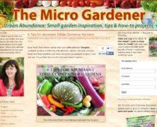 Edible Container Gardens: 6 Tips