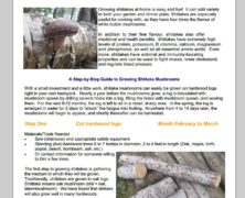 Growing Shiitake Mushrooms (Courtesy Falls Brook Centre)