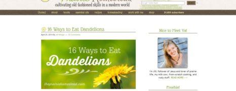 Eat Dandelions in 16 Delicious Ways